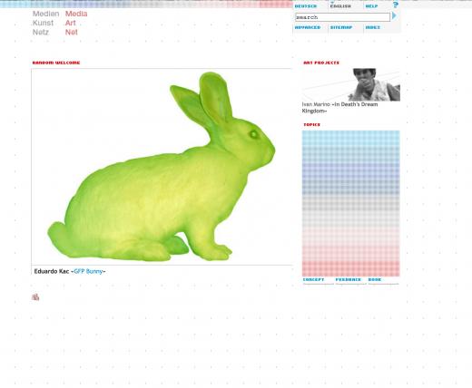 Media Art Net (Website screen shot)