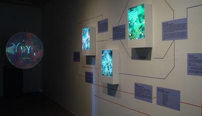 "Exhibition ""Juego Doble: dos ecosistemas"" (2005)"