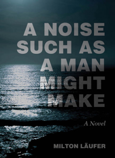 Book cover for A Noise Such as a Man Might Make (Counterpath)