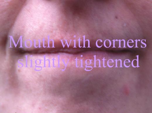 Wordy mouths screenshot 3