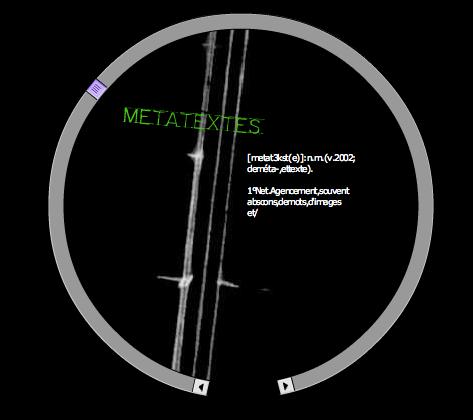Screen shot of Metatexts
